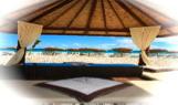 le-palm-beach